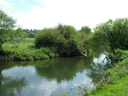 . I paid a visit to Norbury Park, which is just a few miles further north. (river mole norbury park)