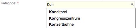 Beispiel Google Places Beschreibung und Kategorie