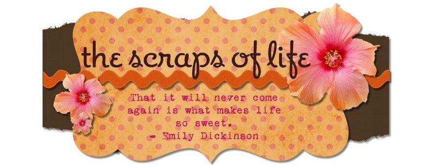 The Scraps of Life