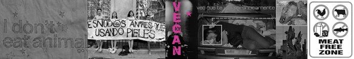 :: veganismo :: etc