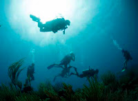 Charter Yacht Promenade - Dive in the BVIs - Contact ParadiseConnections.com