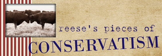 reese's pieces of conservatism