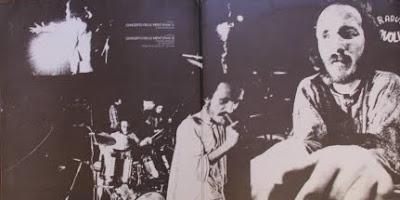 1973 pholas dactylus