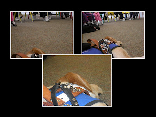 Layout of 3 photos, Toby is knocked out in all, and you can see some children in the top of the picture