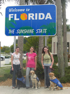 Picture of Toby and his 2 siblings with the FL sign. I'm with Toby in the middle, Duchess and her handler are on the left and Cassie & her Raiser are on the right