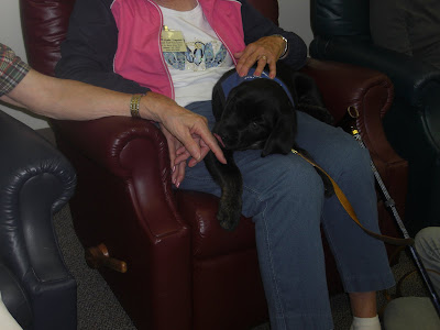 Picture of Rudy laying on a lady's lap, Rudy is licking another person's hand