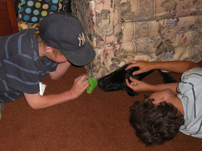 Picture of 2 farm campers playing with Rudy (who is half way under the couch)