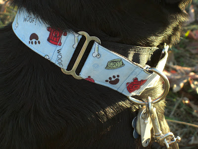 Up close picture of the collar on Rudy's neck; it has paw prints, bones, dog bowls & fire hydrants on it