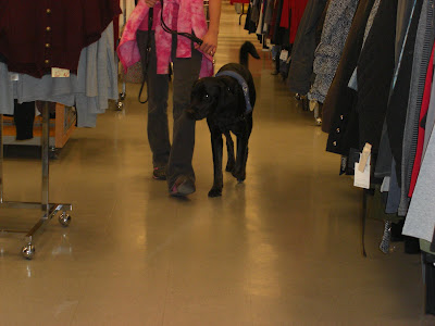 Picture of Rudy & I walking towards the camera inside TJ Maxx; Rudy is paying attention to me - and not trying to sniff the clothes on racks (that are on either side of us)