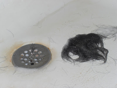 A large pile of Rudy's black wet/soapy dog hair beside the shower drain