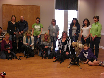 A group picture with all of the pups in training - and the breeder dogs