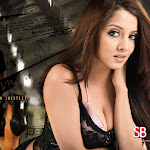 Celina Jaitley - Hot & Sexy Pictures Collection!