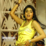 Tamil Hot Actress Shreya