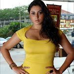 Namitha Hot  & Sexy Pictures Gallery
