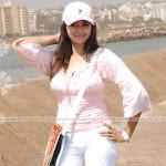 Beautifull & Lovely Hot Mallu Actress Bhavana Wallpapers