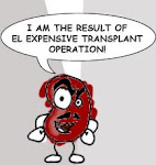 Raul, the Kidney