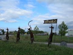 Les chèvres de Villeneuve-de-Berg