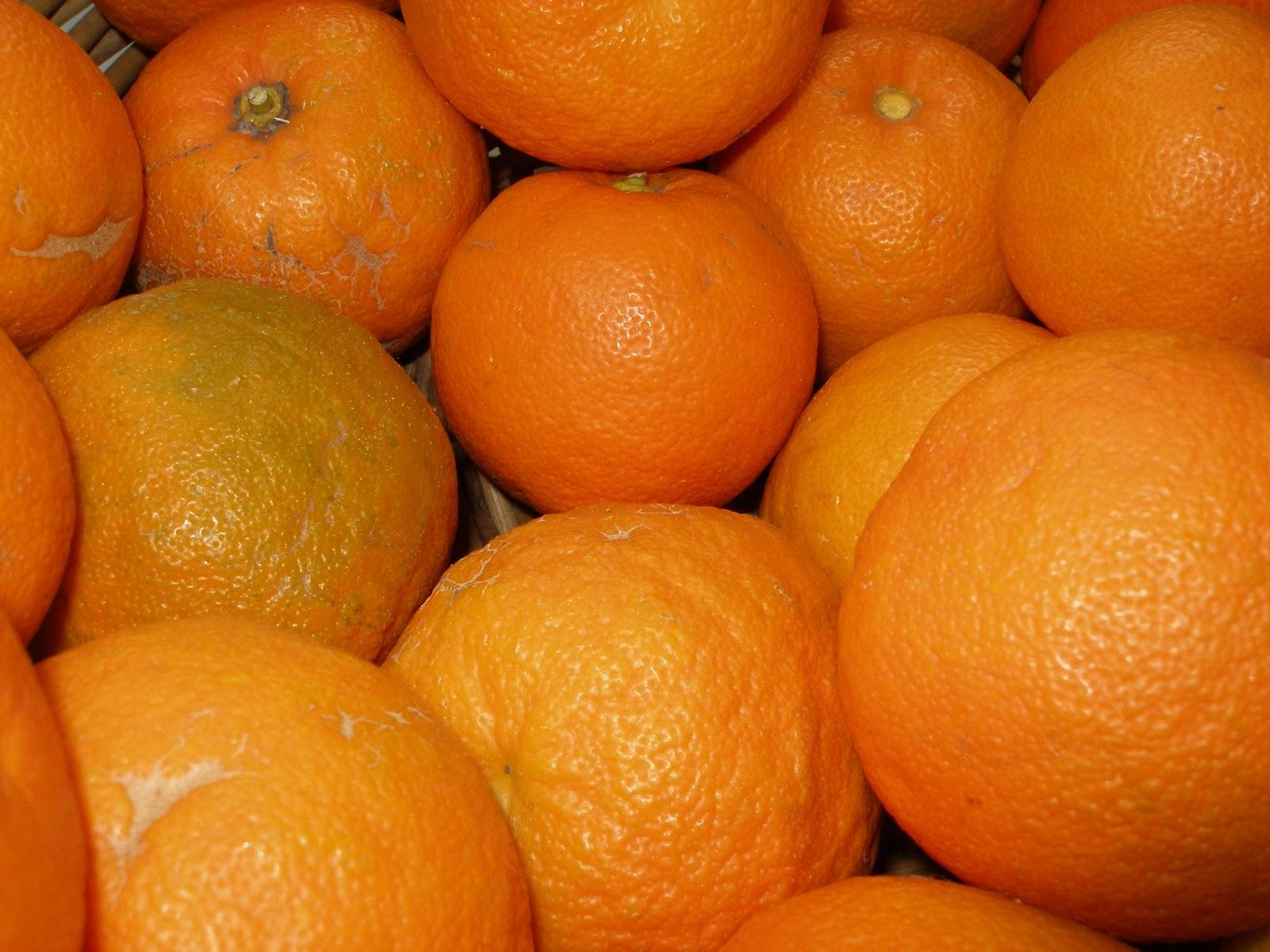 greengarland: Seville Orange Marmalade