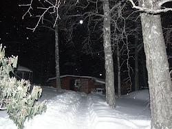 Vintern 2009-10