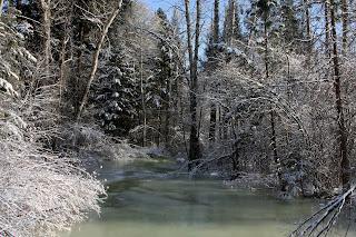Sweathouse Creek in December