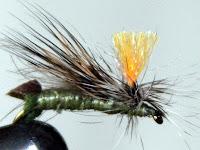 Jack's Nemoura - Skwalla hybrid