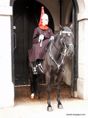 Horse (shit) guard