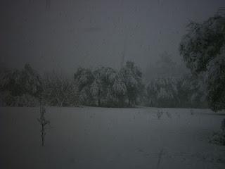 Snow on field.