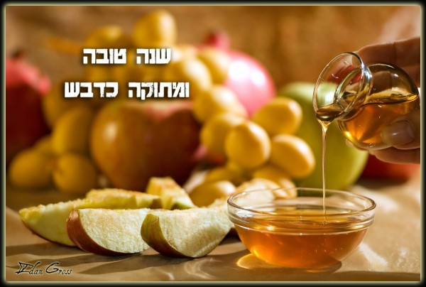 Jill dahnes blog happy rosh hashanah greetings happy rosh hashanah greetings m4hsunfo