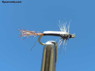 Fly currents fishing report and news fishing and for Midge fly fishing