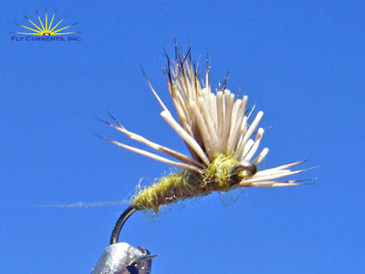BWO Fly | BWO Emerger | BWO Fly Pattern - How to Tie