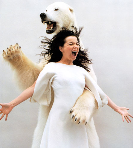 Bjork - Triumph of a Heart ! dans CLIPS Préréfés bjork-and-a-polar-bear