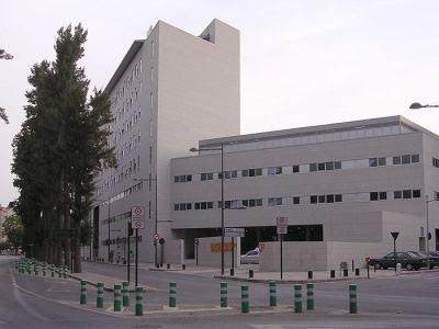 Petición de Casa para Hitsugaya Tōshirō 2