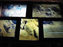 Trabalhos de resgate e reconstrução das imagens descobertas - Xiam