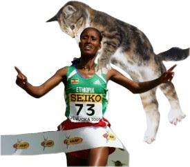 Feliz muchacha etíope a punto de ser alegremente devorada por un cachondo felino salvaje (cantemos: ingonyama nengw' enamabala!)