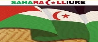 SAHARA LLIURE!!