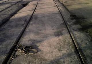 Integración del ferrocarril en Algeciras