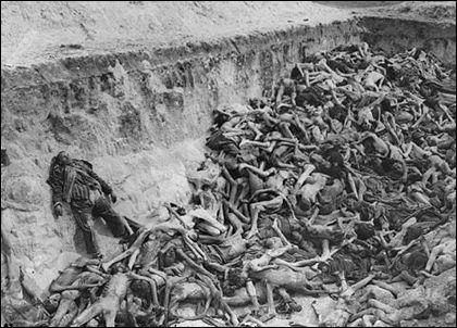 holocaust15st2 lady hamilton resort spa 3 5