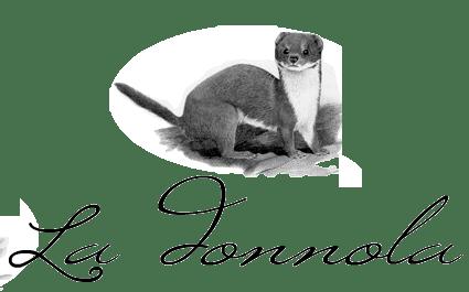 Il blog di la donnola