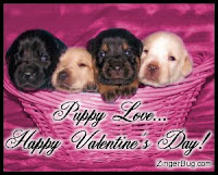 Free Valentine Puppies Wallpaper