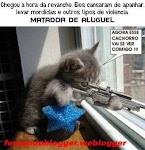 Os Gatos Querem Vingança