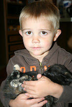 Dawson with the kitty