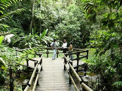 Turismo pereirano pereira paraiso turistico for Bodas en el jardin botanico de medellin
