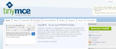 TinyMCE Example tab