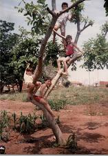 Árvore de crianças...