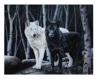 Los dos loblos en Bloghotpoint
