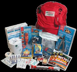 Essentials in an Emergency Car Kit