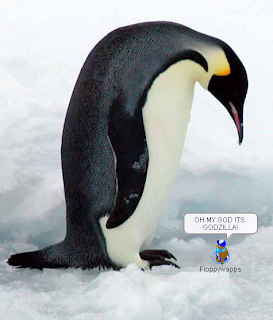 Funny pictures of penguin