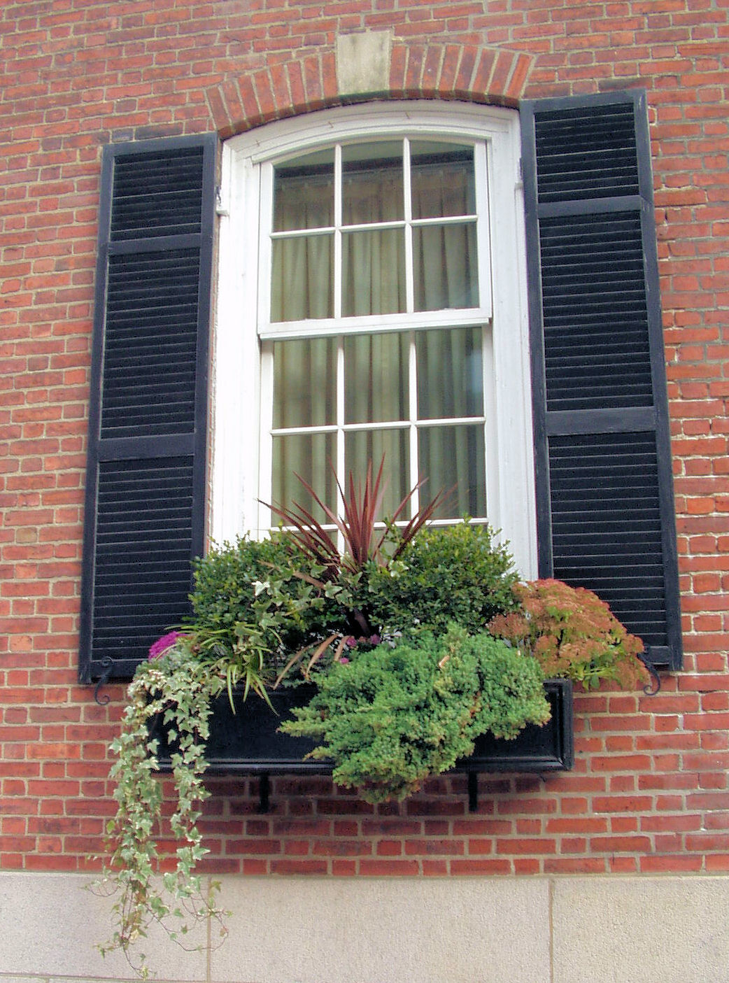 Christmas window box filler - A Pretty Window Box Filled With A Variety Of Greenery