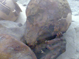 firavun cesedi
