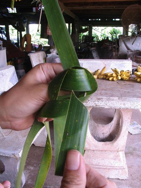 สอนวิธี สานนก สัตว์ ด้วยกระดาษ หลอดกาแฟ  ใบลาน ใบมะพร้าว,วิธีทำ พับ นก สัตว์   ทำนก สัตว์ด้วยกระดาษ หลอดกาแฟ how to weave fold bird from palm leaf coconut leaf leave drinking straw ,how to make diy bird from palm leaf coconut leaf leave drinking straw,how to weave bird animal ,woven bird from paper palm leaf coconut leaf leave palm leaf coconut leaf leave drinking straw ,woven paper palm leaf coconut leaf leave palm leaf coconut leaf leave drinking straw bird animal,how to weave,diy how to palm weaving   cómo tejer pájaro veces de hoja de palma hojas de coco dejar la paja de beber